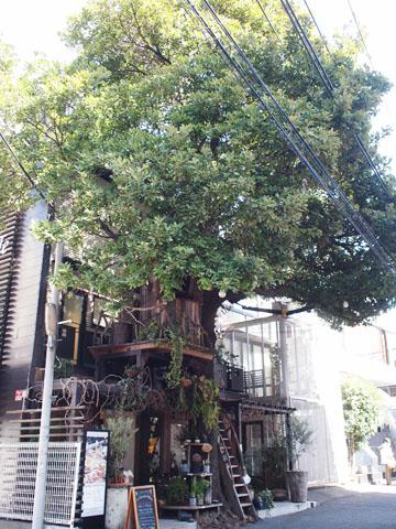 【広尾】カフェ レ・グラン・ザルブル