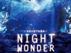 新江ノ島水族館の夜を楽しむ!ナイトワンダーアクアリウム2016?月光に漂う水族館?