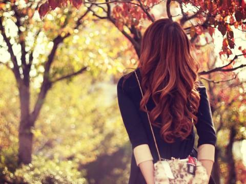 秋の休日の過ごし方