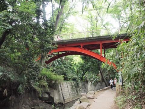 等々力渓谷公園の赤い橋