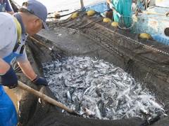 関東近郊の農業や漁業に親しみ、食の魅力を再発見するバスの旅
