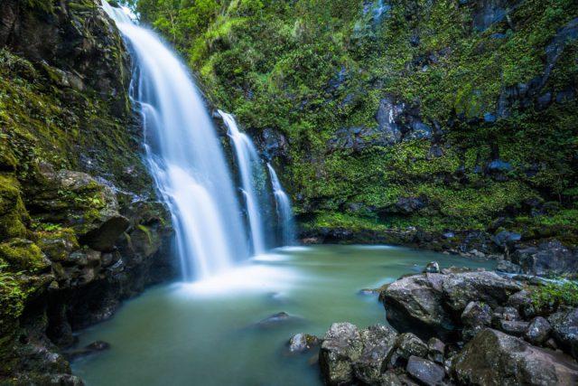 自然浴・森林浴をしに行く