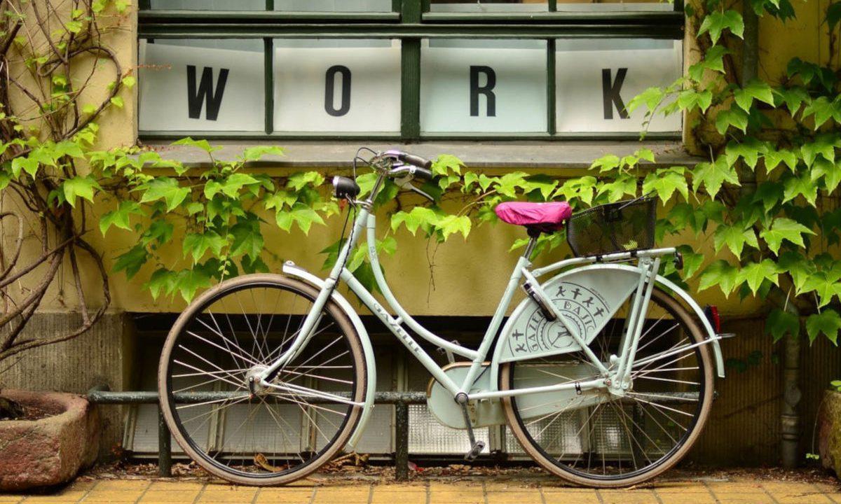 自転車でちょっと遠くまで行ってみる
