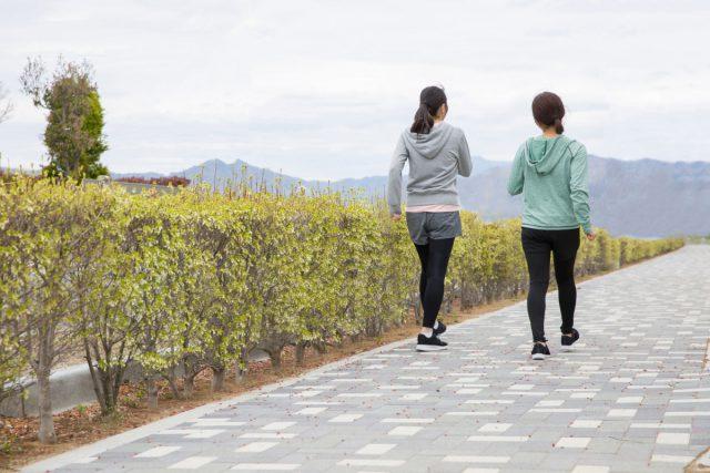 片道5,000歩で健康散歩