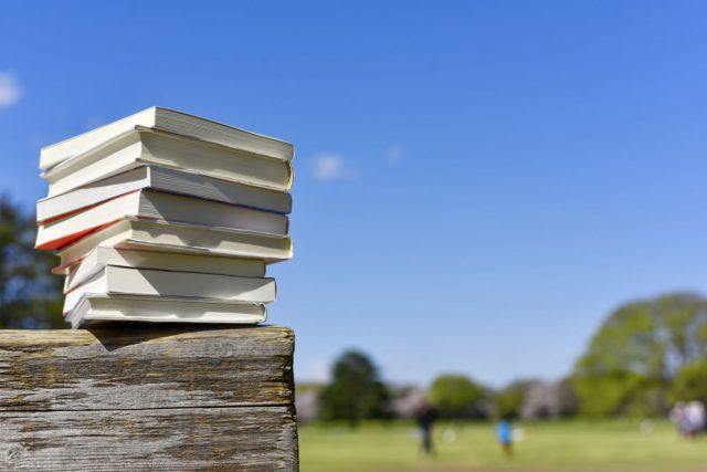 ベンチでゆっくり読書する