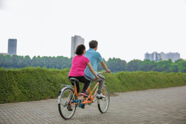 公園二人で漕ぐ「タンデム自転車」などに乗る