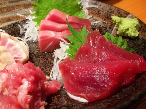 みさきまぐろきっぷで、三崎のまぐろを食べに行こう!