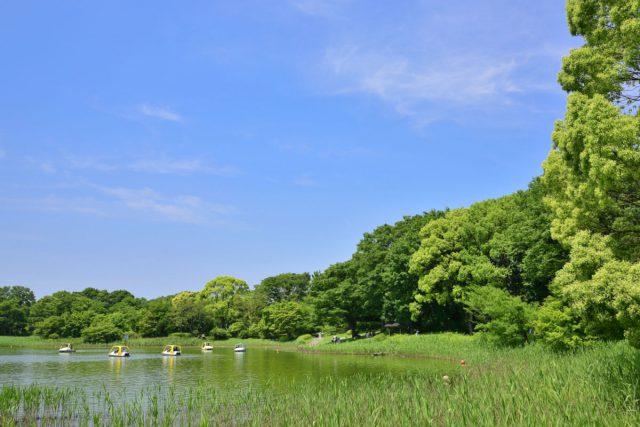 昭和記念公園ボート
