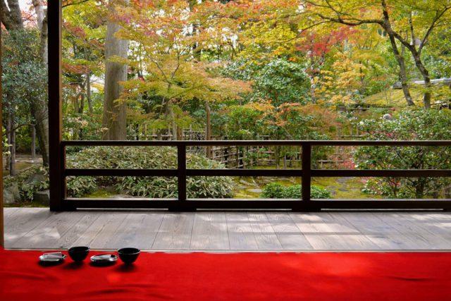 庭園&茶室