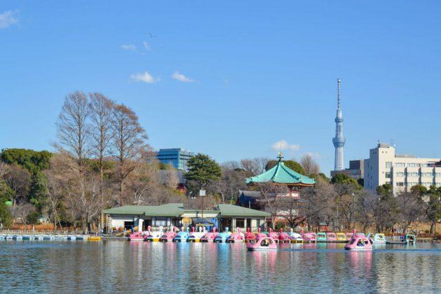 上野恩賜公園ボート